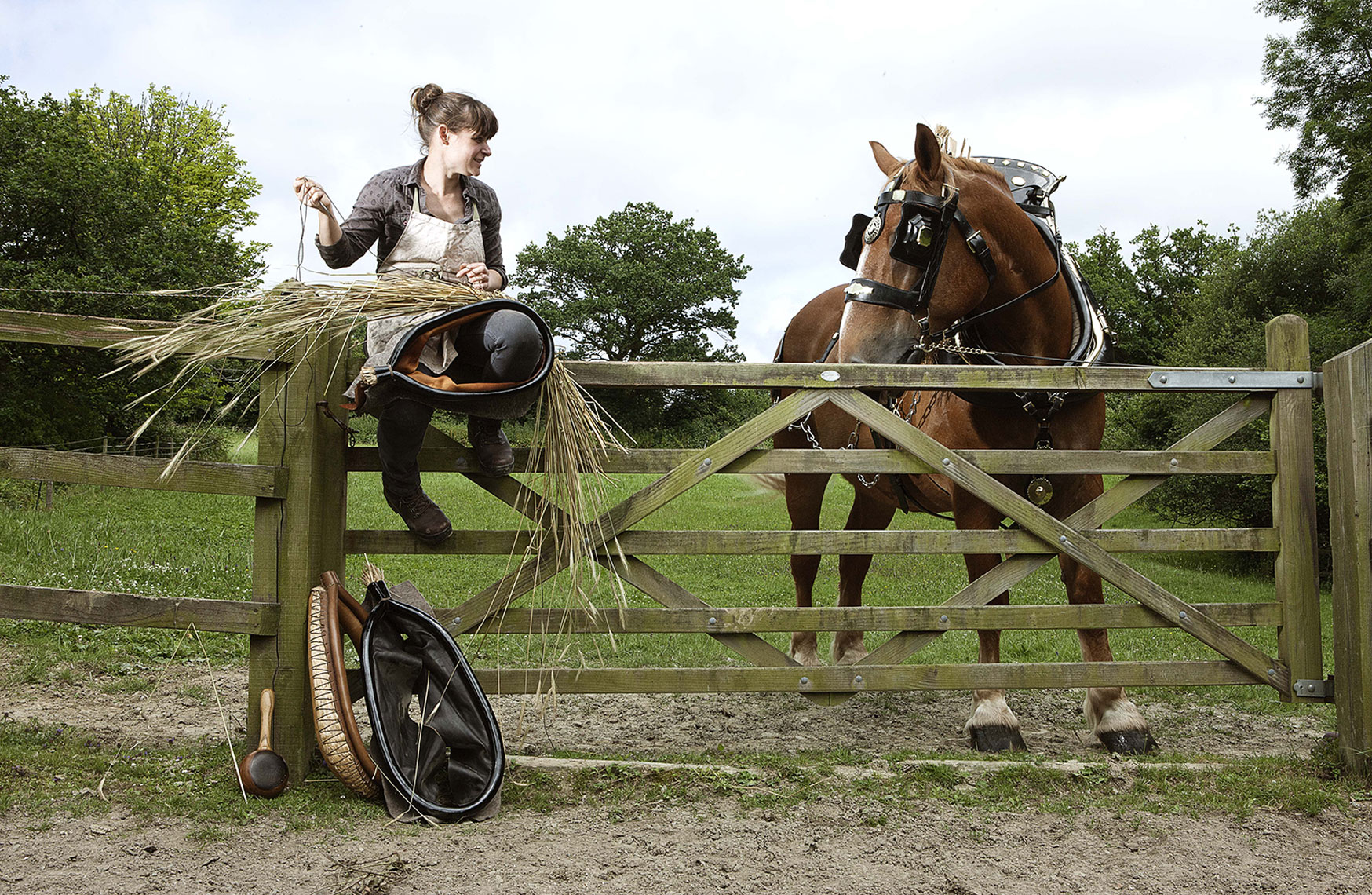 CountryLife_Cannon_KateHetheringtonCollarsAndHarness145