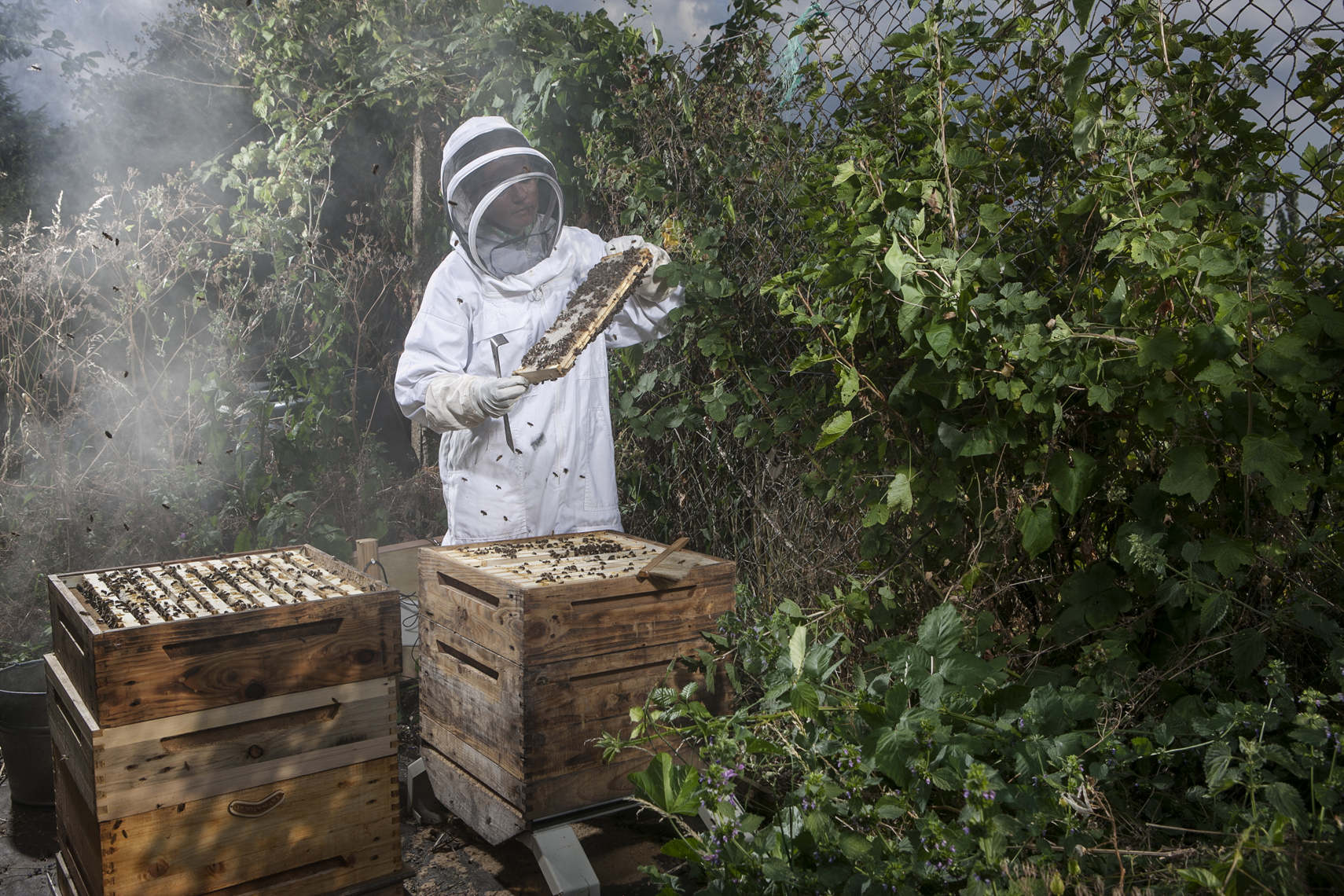 CountryLife_cannon_BeeKeeper065